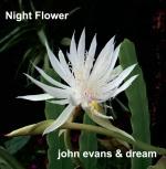 Night Flower cover