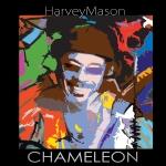 HMason_34113_CMLEON_5x5RGB300